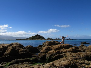 Southern tip of the North Island.