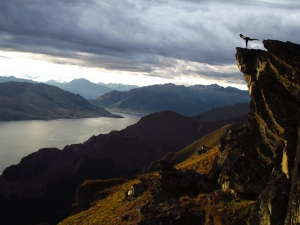 Evening yoga above Lake Hawea.